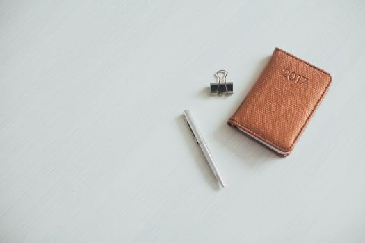 The 2017 100 — 31 Successes. — Leather 2017 Planner