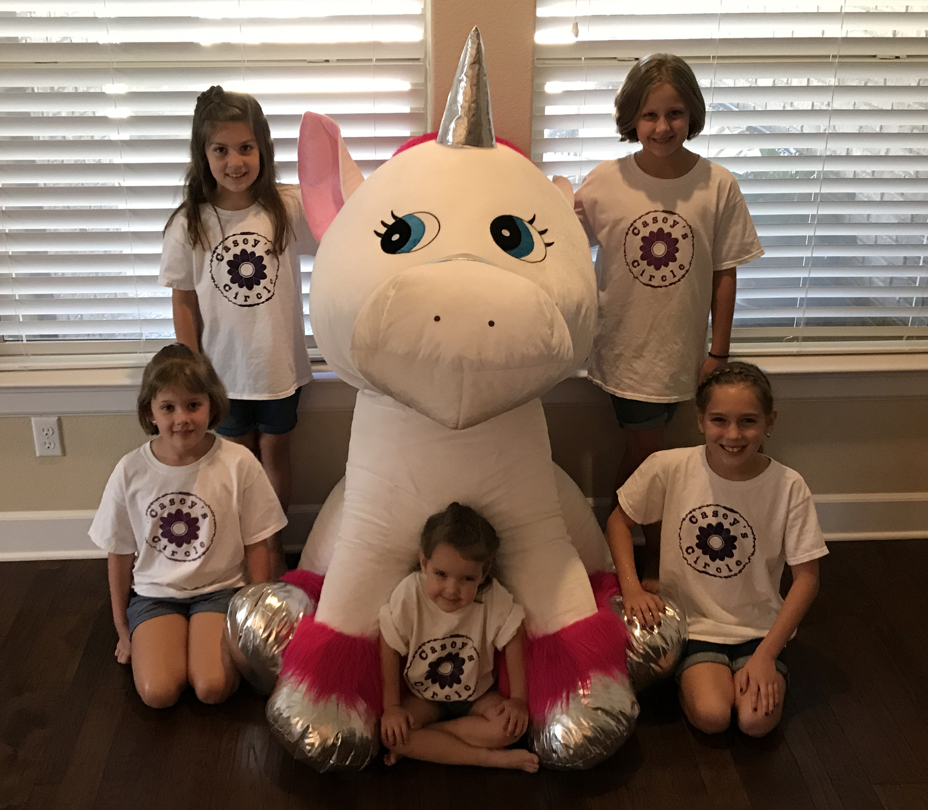 Aubrey and Taylor from Dallas donated an AMAZING stuffed unicorn. This unicorn stands over 4 feet tall has a shiny silver horn and fluffy pink mane.  sc 1 st  Caseyu0027s Circle & Halloween Costume Giveaway u0026 Raffle u2013 Caseyu0027s Circle
