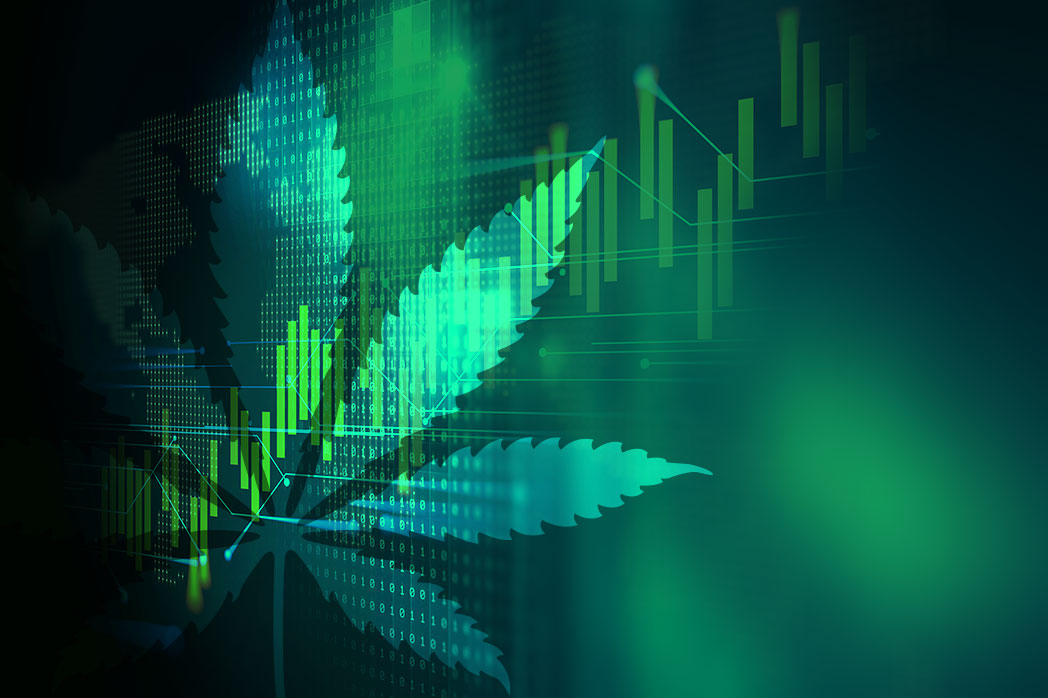 25 Cannabis Based Media Companies, And Their Yearly Profit