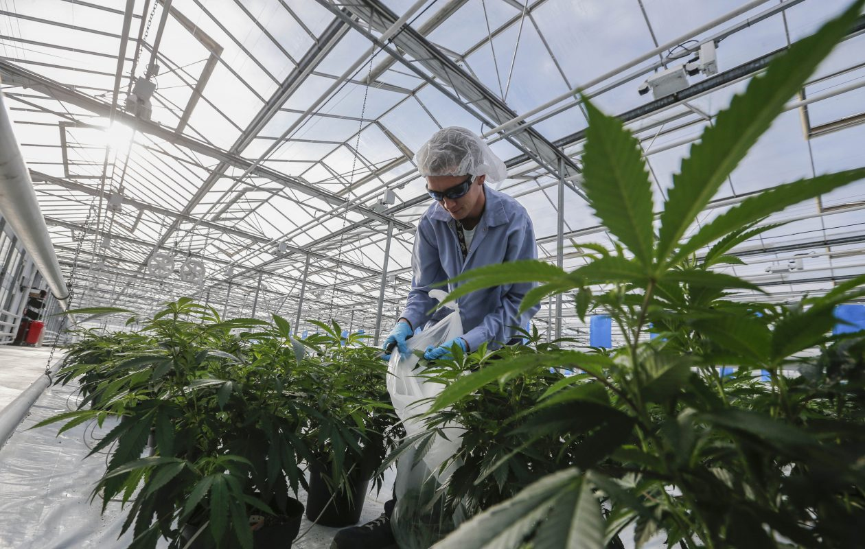 CannTrust Holdings Closes US$15 Million Mortgage for Cultivation Facility
