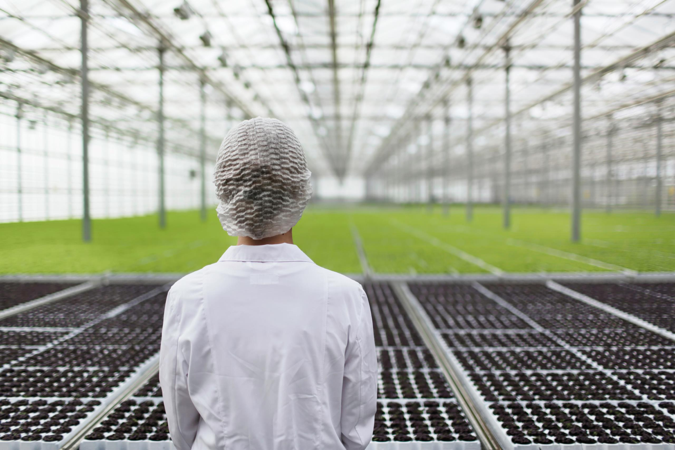 CSA Put Pressure on Canadian Owned US Cannabis Assets