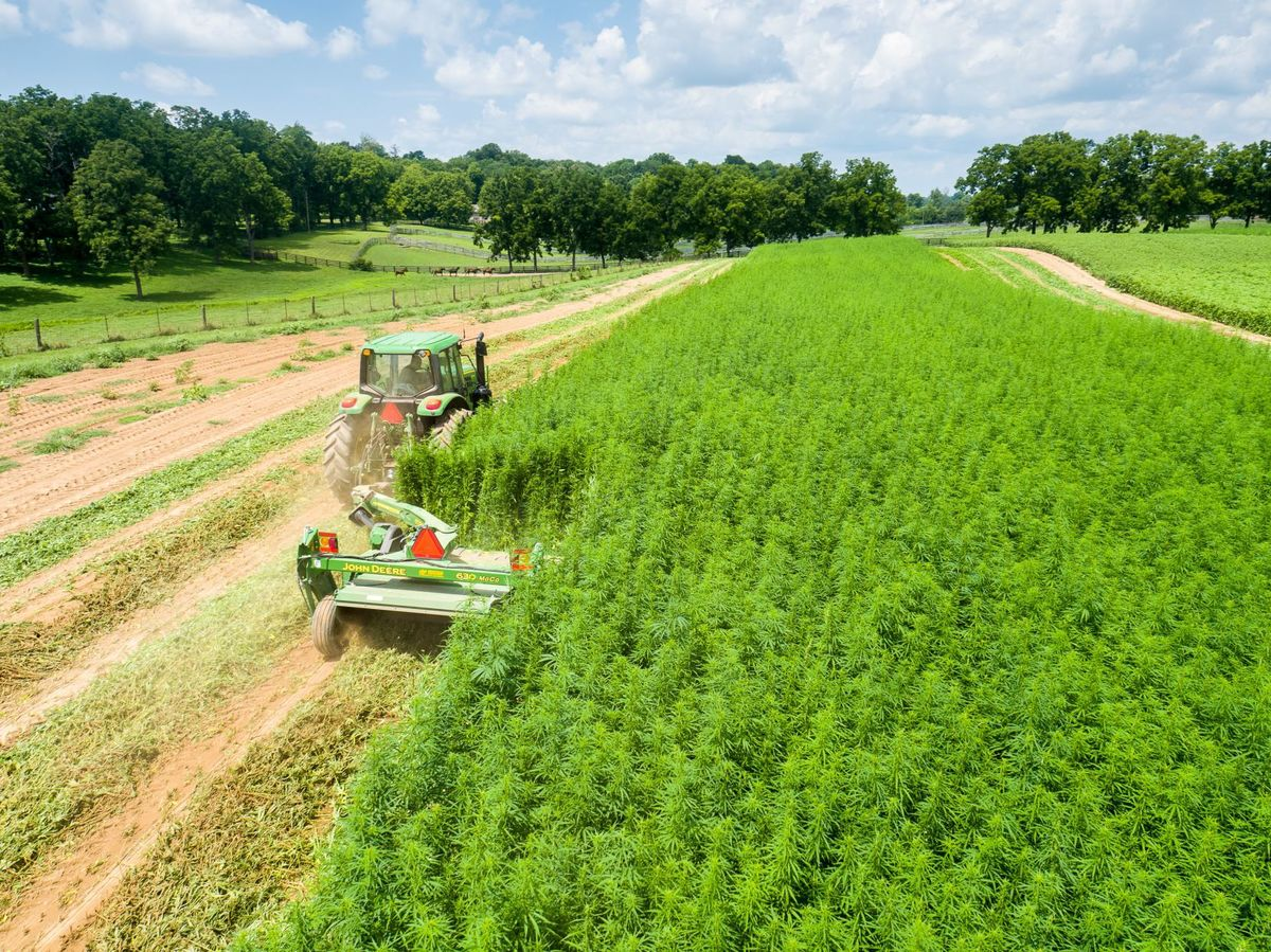 Industrial Hemp Pilot Program Reappears in the Missouri Legislature