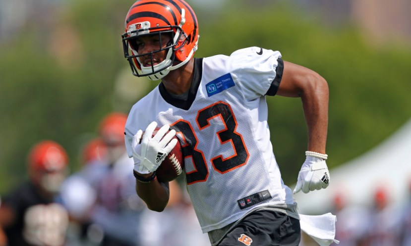 NFL: Cincinnati Bengals-Training Camp