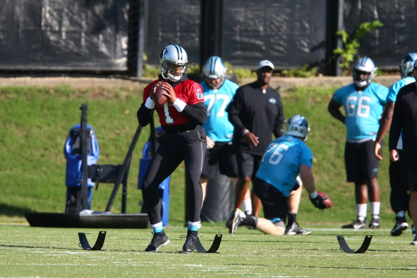 NFL: Carolina Panthers-Minicamp