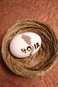 Can the government take your 401k?