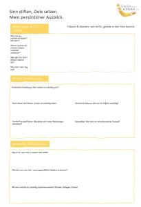 1. Seite des Cash-oder-Karma-Jahresplanungs-Tools