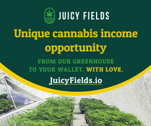 Earn money Growing Cannabis