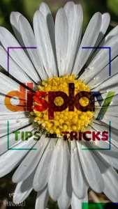 Display Social Tips and Tricks