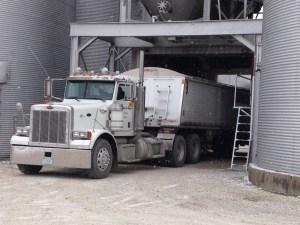 Loading the Peterbilt, to send grain to market.