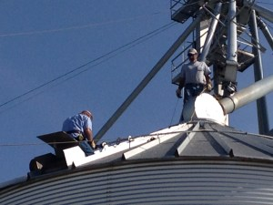 Ben cuts an opening in the roof of bin #4 for a new vent device.  Yes, he is wearing a safety harness.