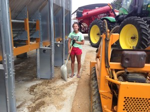 Haley is cleaning up the chaff and grain from under the dryer before it has a chance to become smelly.