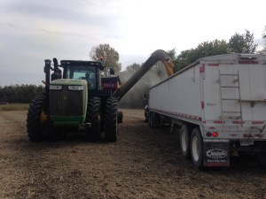 Brandon loads soybeans into the old Red Stripe Mack truck. This was at the Freddie farm.