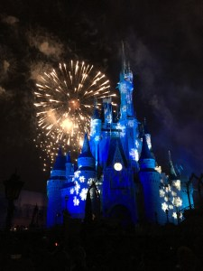 The special Christmas fireworks show at the MK was terrific!