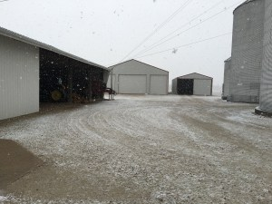 There's just enough snow to dampen the roads, and get the Peterbilt a little dirty today as corn gets delivered to GPC