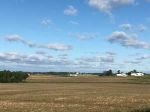 Across the neighborhood to the west, you can see the bright blue skies this morning.  The fields are just beginning to show a hint of green from the newly-planted crops.