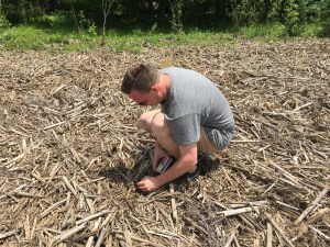 Philip lights the corn stalks that drifted in from the neighbor's field during one of White River's flood events.