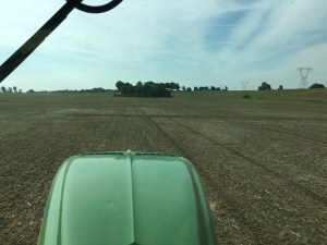 This was my view late yesterday morning as I was replanting at the Steimel Farm.
