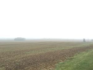 Looking west, the fog shrouds the neighborhood in a haze.  It feels damp, too.