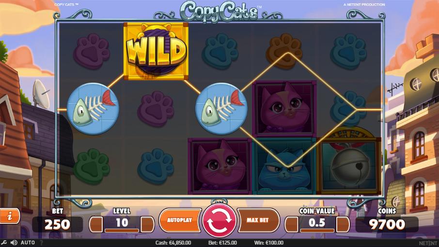 Cats eye casino no deposit bonus code 2013 mgm grand casino marketing