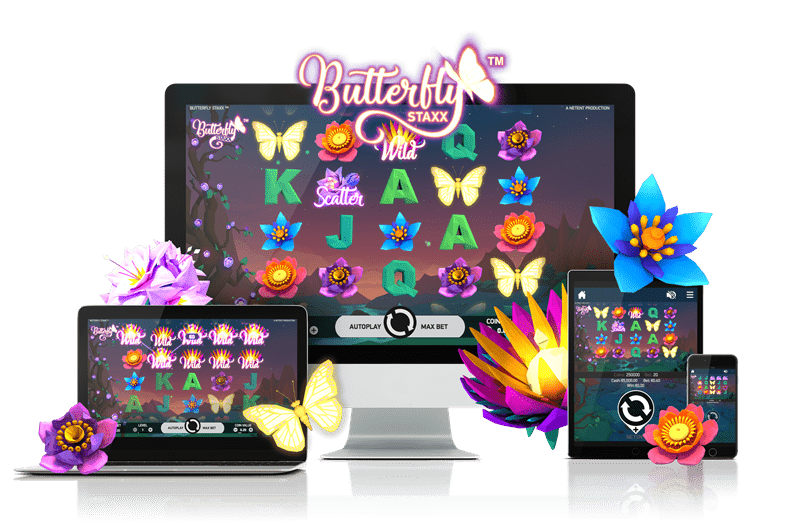 MyWin24 Casino NetEnt Butterfly Staxx