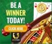 Betstreak Bitcoin Casino Winner