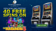 Platinum Reels Exclusive 50 FREE RTG The Mariachi 5 Spins Welcome Offer