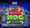 CryptoReels 3 x 80% Slots Bonus plus $10 FREE Spins on Wild Hog Luau New RTG Game Special Offer