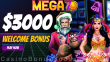 Mega7s Casino $3000 plus 77 FREE Spins on RTG Wild Hog Luau Mega Welcome Package