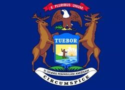 Michigan State Flag - Casino Genie