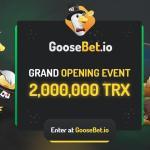 Goosebet Casino