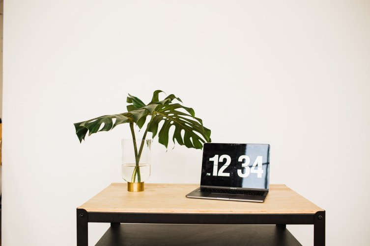 casi yosts computer and plant in the portland studio