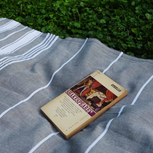 Othello on a blanket, Shakespeare, hygge in summer