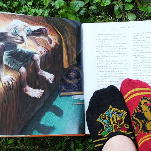 Dobby birthday socks, Harry Potter