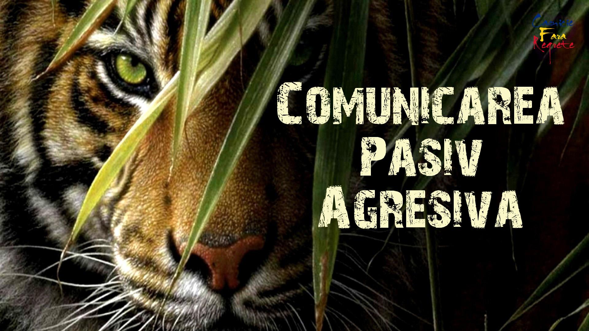 Comunicarea Pasiv Agresiva