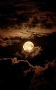 Full Moon: 11/25/15