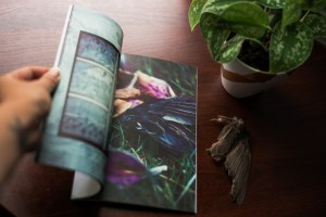 Art Books & Prints