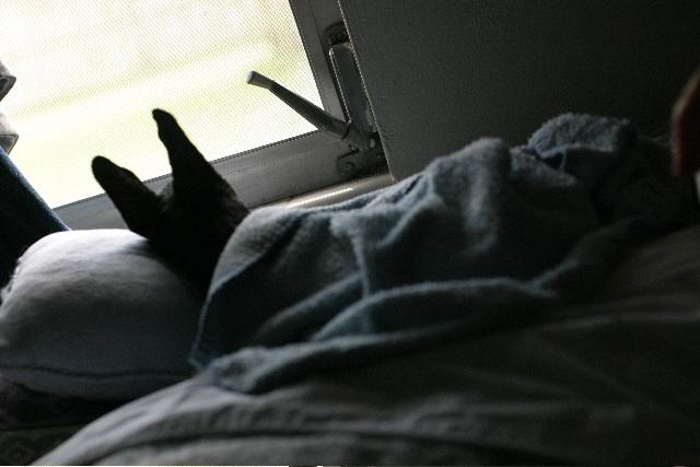 Ramirez.sleep