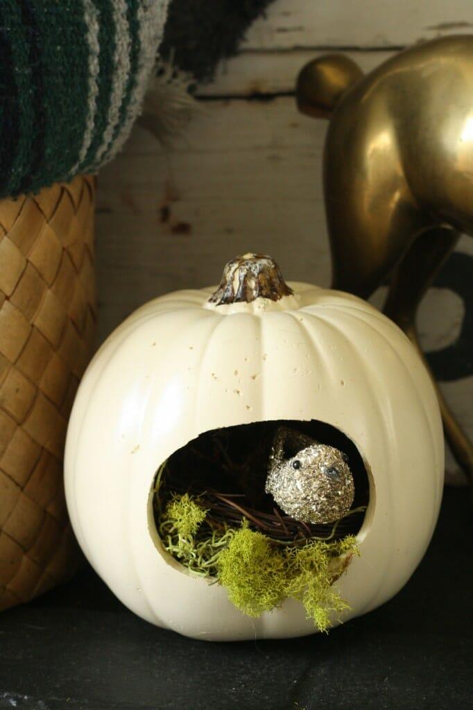 bird nest pumpkin #trickyourpumpkin