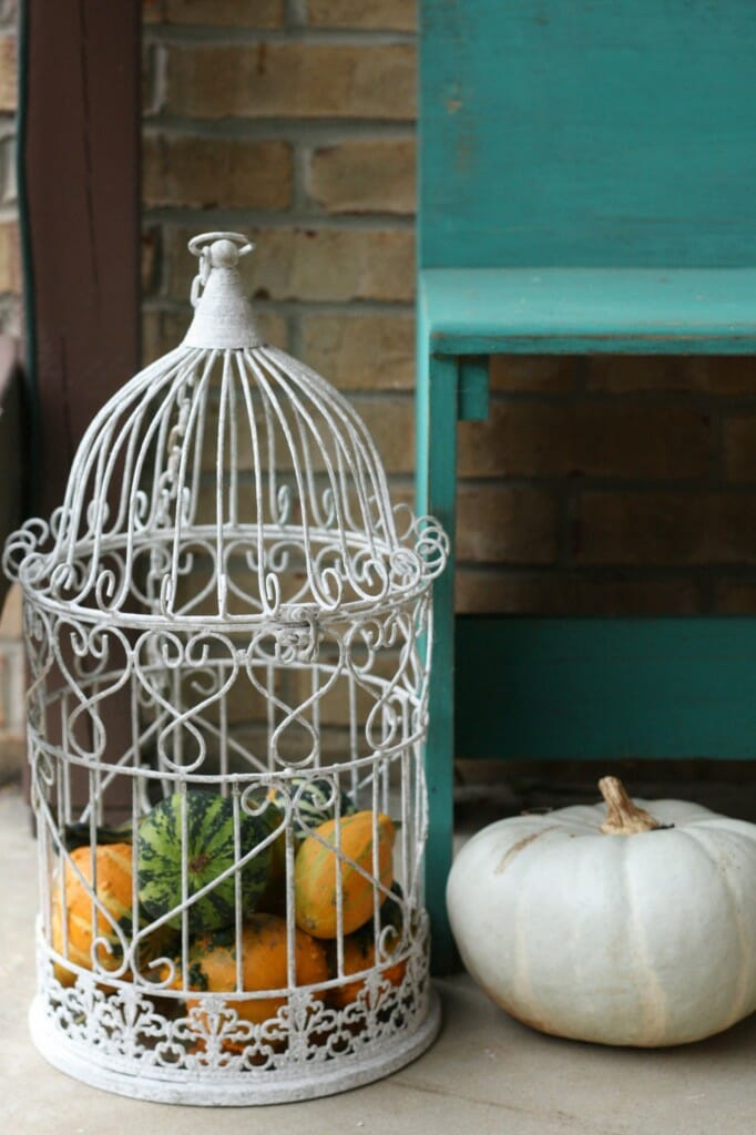 bird cage filled with gourds