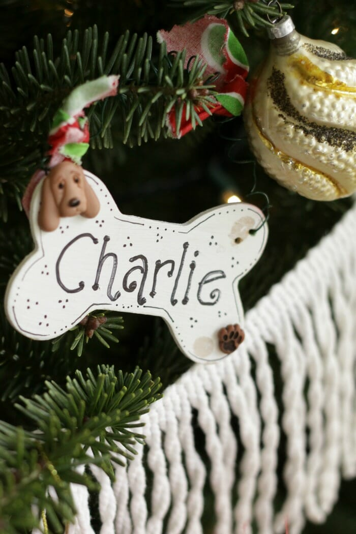 Charlie's ornament