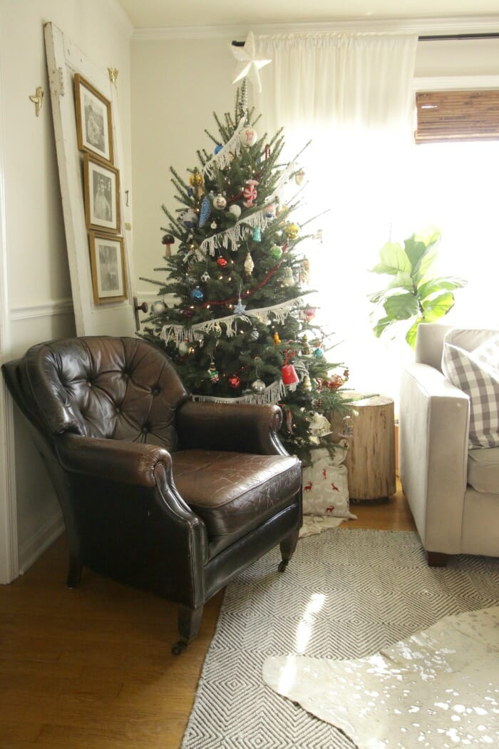 Living Room Chair and Tree