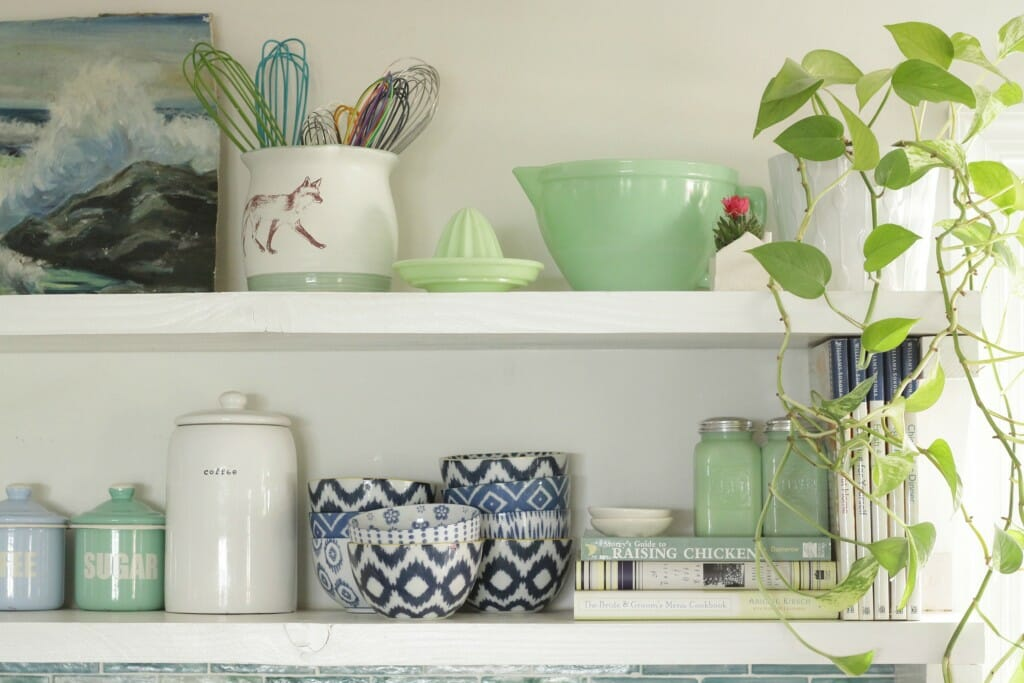 Pothos on kitchen shelf; blues and greens vintage and eclectic