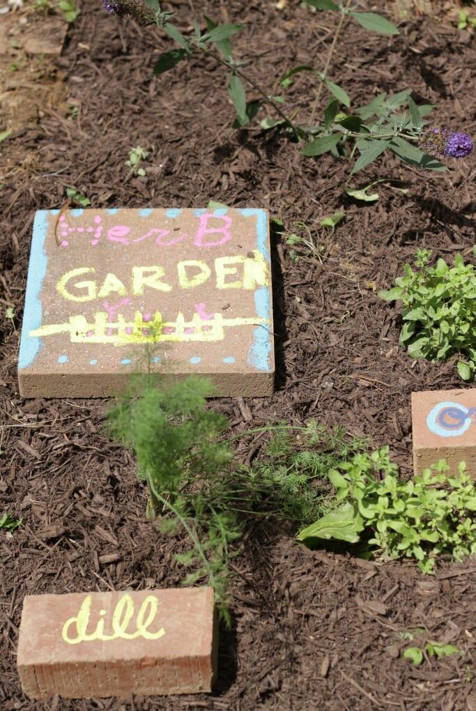 Emmy's Herb Garden Paver