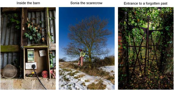 claire lacey man v nature images sonia the scarecrow entrance to a forgotten past