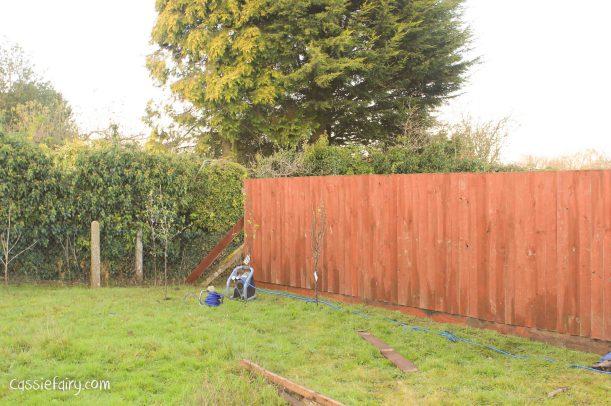 Garden makeover - new fence -4