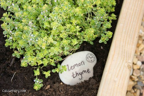 DIY plant markers for garden using pebbles