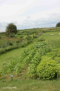 Jimmy Doherty Farm in Suffolk-5