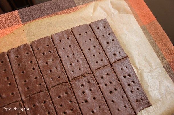 DIY homemade bourbon biscuits recipe-3
