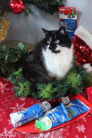 cat christmas gift guide-3