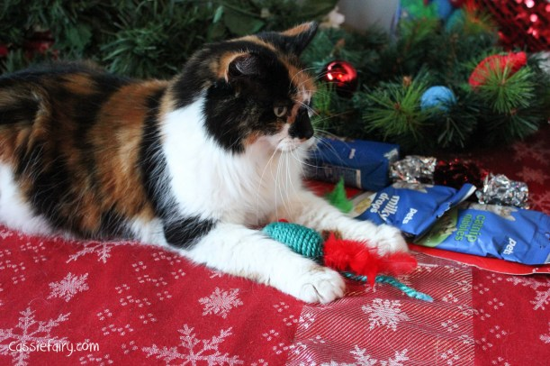 cat christmas gift guide-4